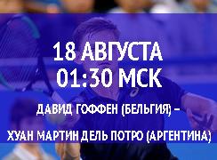 Бесплатный прогноз на теннисный турнир Давид Гоффен (Бельгия) – Хуан Мартин дель Потро (Аргентина) 18 августа